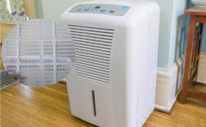 How often to change the dehumidifier filter?